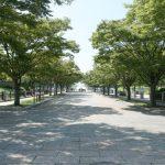 豊かな水と緑に囲まれたまち「江戸川区」の特徴について